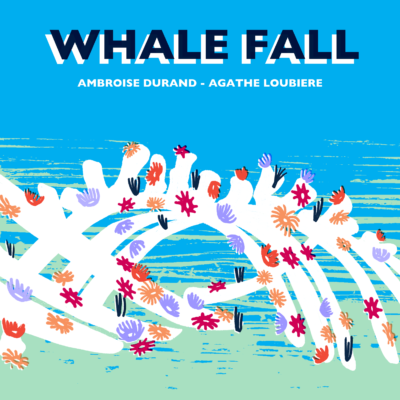 Image whale fall